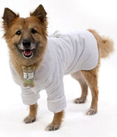 Plush Spa Dog Robe